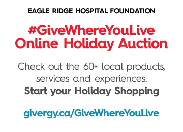 Give Where You Live Online Holiday Auction